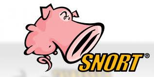 snort_logo.jpeg